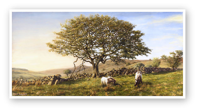 The Moorland Oak landscape, Dartmoor painting by David W Young