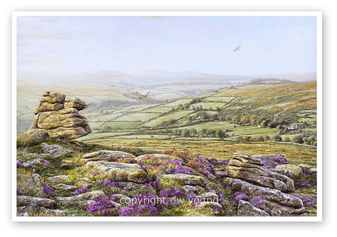 Evening Heathers, Yar Tor, Dartmoor print enlargement