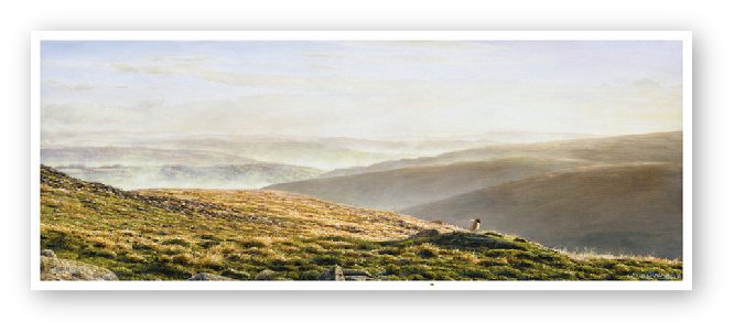 Valley Mists, Belstone, Dartmoor painting enlargement