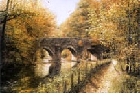 prints plymbridge plymouth devon david young paintings