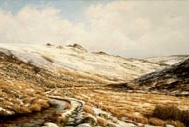 print winter solstice tavy cleave dartmoor david young paintings