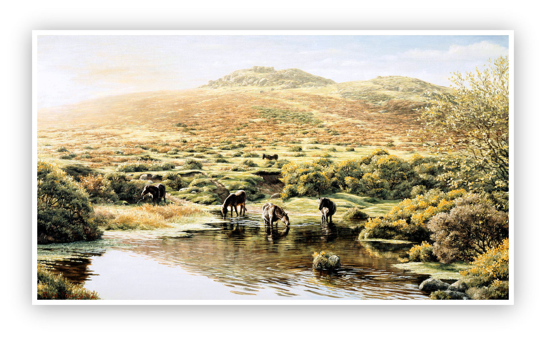 Simons Lake below Sharp Tor, Dartmoor print enlargement