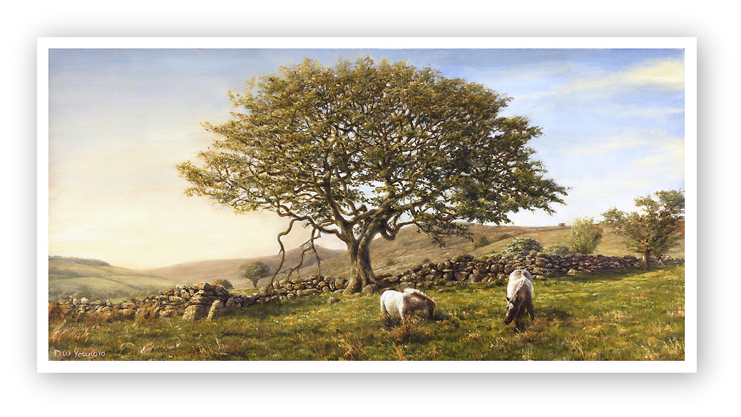 The Moorland Oak, Dartmoor painting