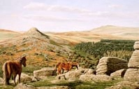 print leather tor burrator dartmoor david william young paintings