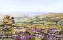 print evening heathers yar tor dartmoor david young paintings