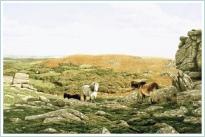 print hound tor dartmoor david young paintings