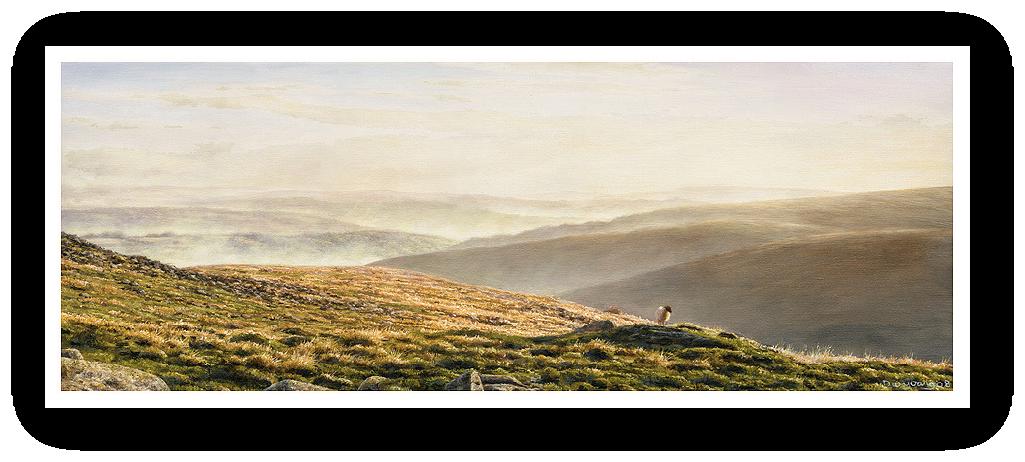 Valley Mists, Belstone, Dartmoor painting