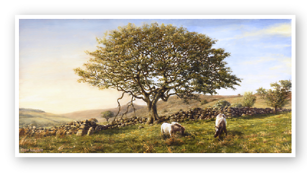 The Moorland Oak landscape Dartmoor painting by David William Young