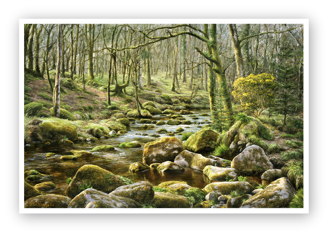 River Meavy, Norsworthy, Burrator, Dartmoor painting