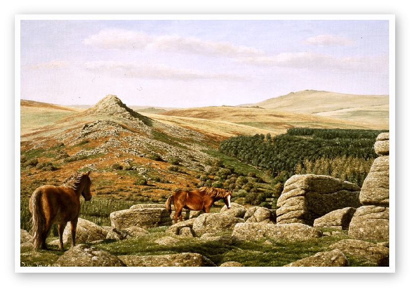 Leather Tor, Burrator, Dartmoor