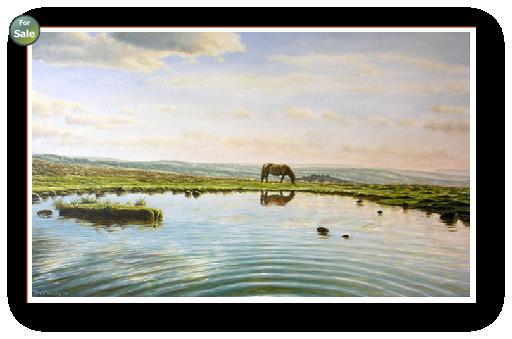 Reflection in a Dartmoor Pool