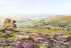 print evening heathers yar tor dartmoor david young paintings