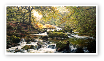 The Cleave of the East Okement riverl, Dartmoor painting by David W Young