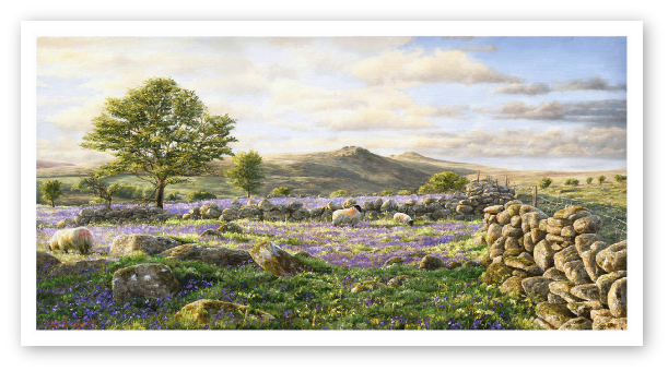 Bluebell Fields, Tavy Cleave Dartmoor painting artist  david young