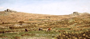 print hay tor paintings dartmoor david young