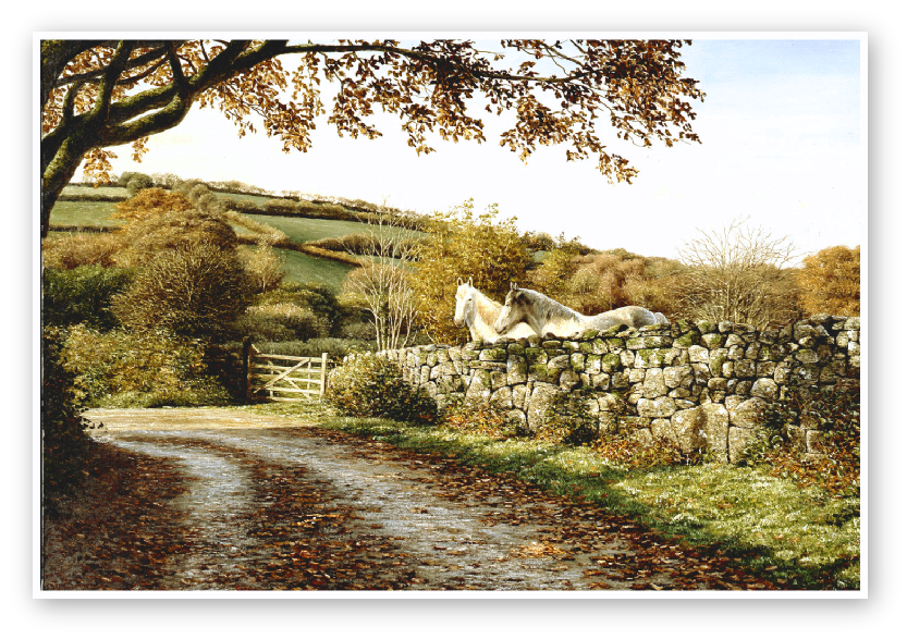 Autumn Lane, Dartmoor