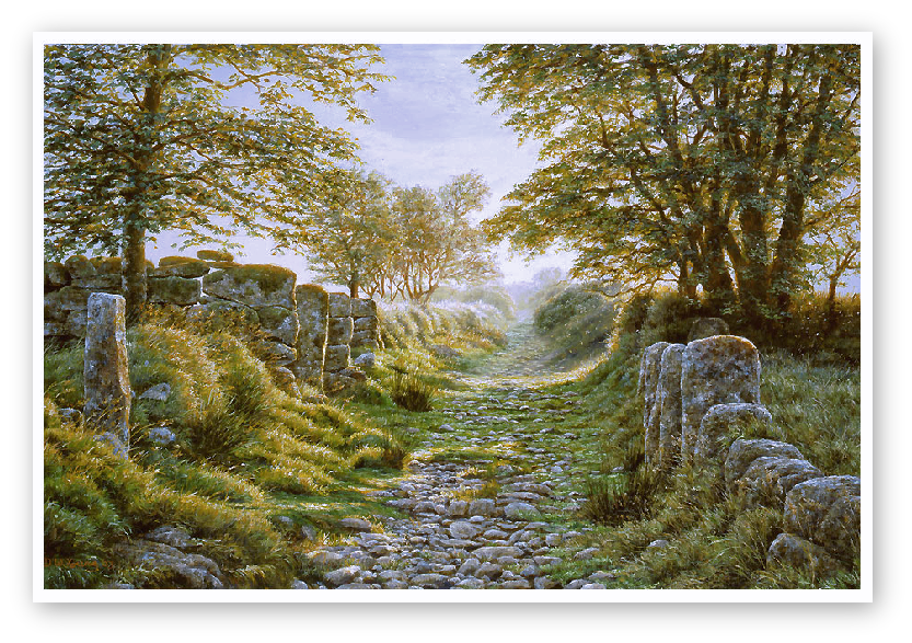 Swincombe Farm Lane, Dartmoor