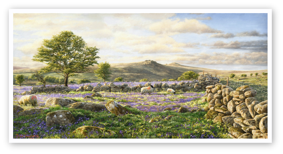 Bluebell Fields, Tavy Cleave, Dartmoor print enlargement