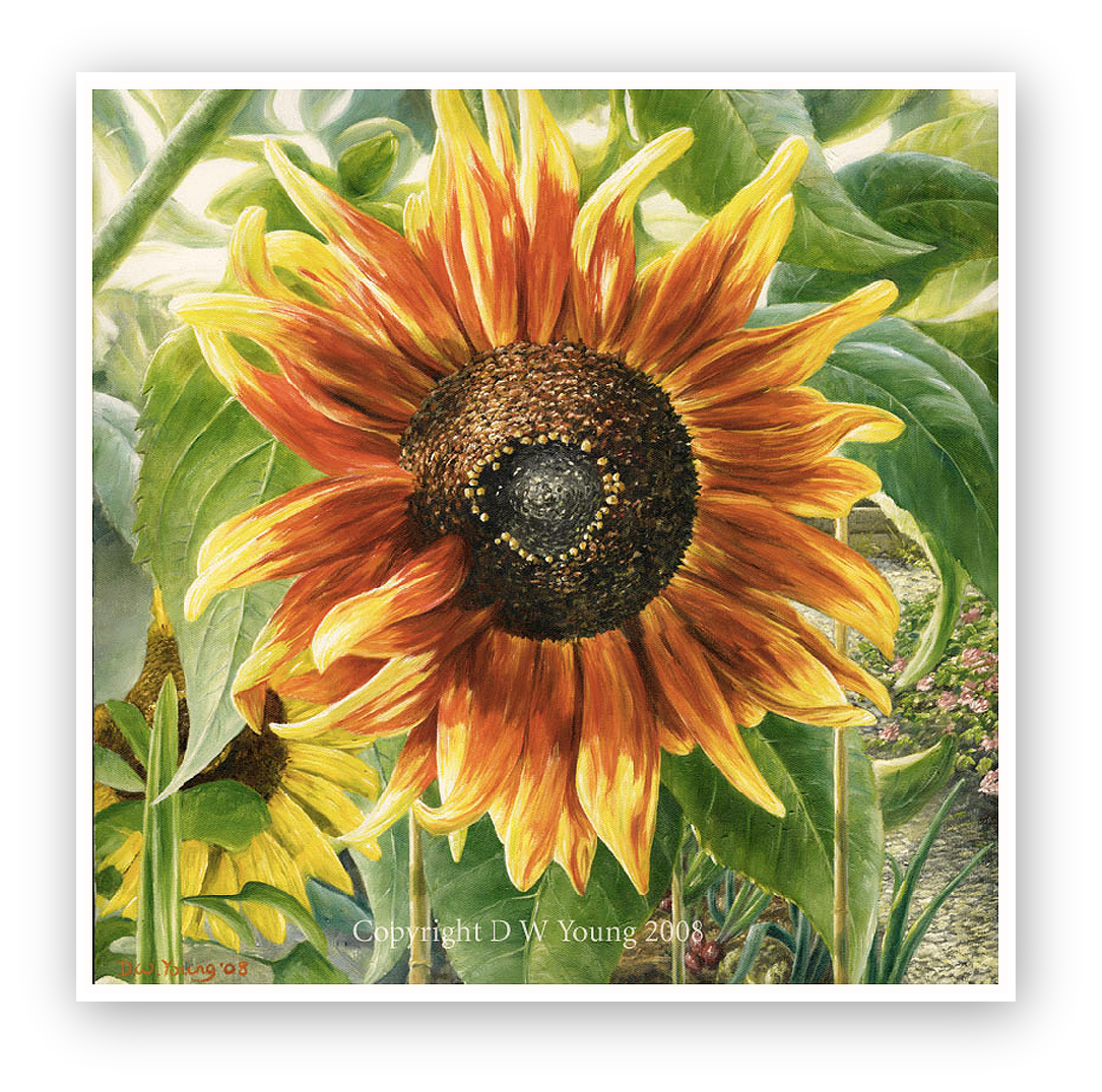 Sunflower in the Artists garden painting