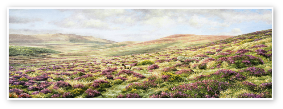 Bouquets from Heaven, The Taw Valley, Dartmoor print enlargement