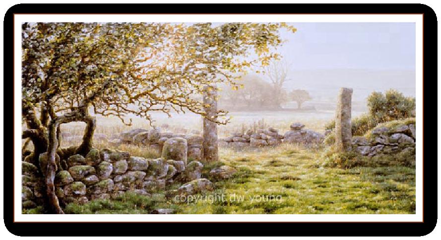 Apple & Granite, Swincombe Farm, Dartmoor print enlargement