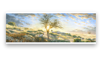 Painting of Hawrthorn in a Dartmoor Sunset by David Young