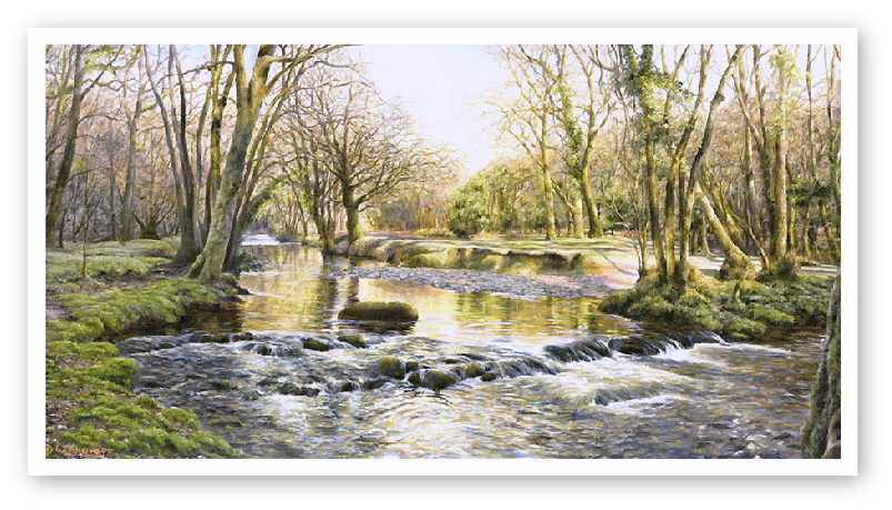 The River Walkham, Near Double Waters Dartmoor painting