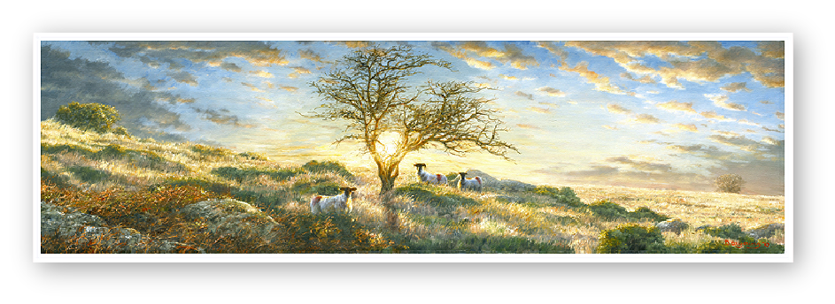 Hawthorn in a Dartmoor landscape. Painting by David W Young