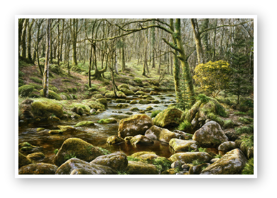 The River Meavy, Norsworthy, Burrator, Darmoor paintings by david william young