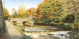 prints abbey bridge tavistock weir devon david young paintings