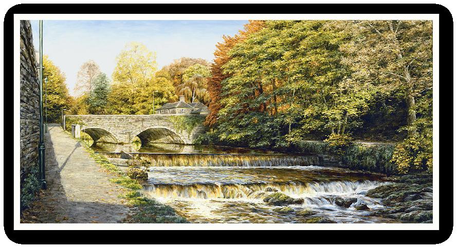 Abbey Bridge, Tavistock Weir, Devon print enlargement