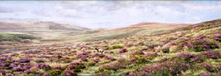 print bouquets from heaven taw valley dartmoor david young paintings
