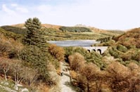 print burrator reservoir dartmoor david young paintings