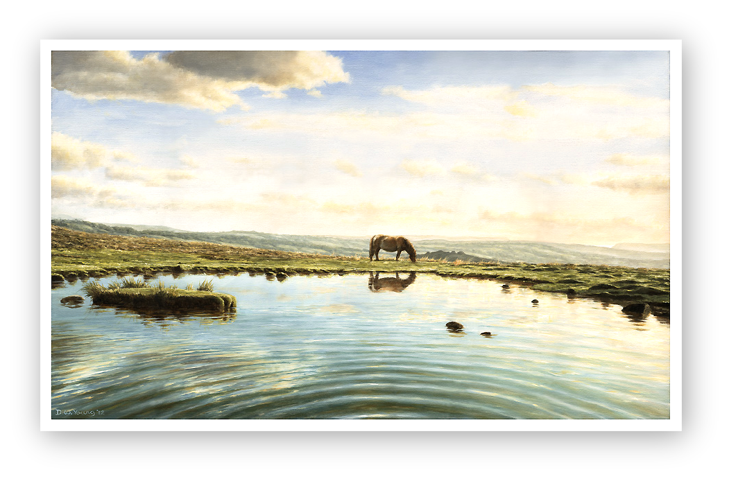 Reflection in a Dartmoor Pool, Staple Tors, Dartmoor painting