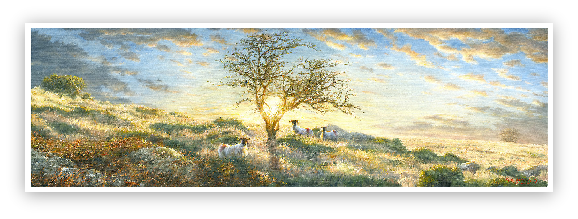 Hawthorn in a Dartmoor landscape painting David William Young
