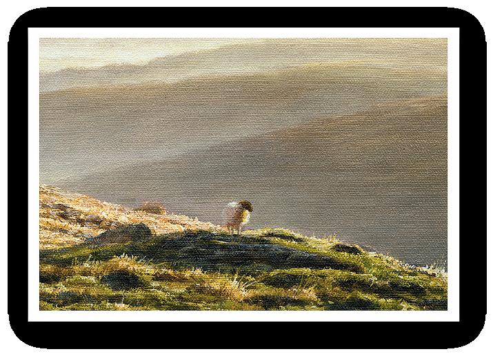 Valley Mists, Belstone, Dartmoor detail