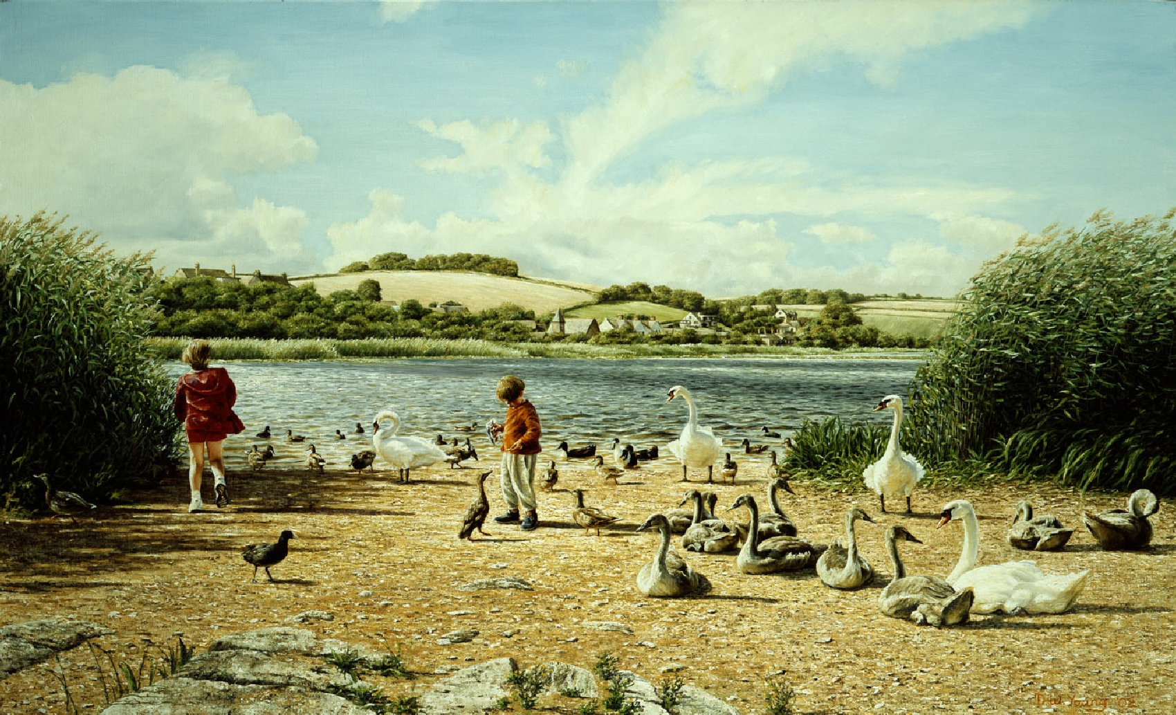 Summer Breeze with Swans, Slapton Ley painting by David William Young