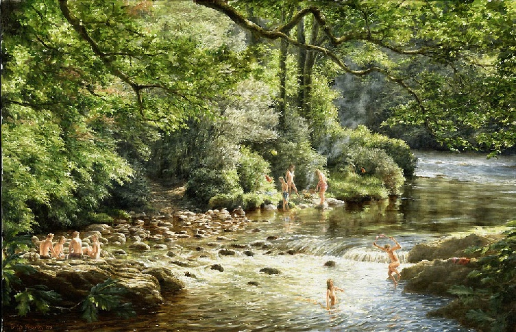 Skinny Dipping the River Dart Dartmoor by David William Young