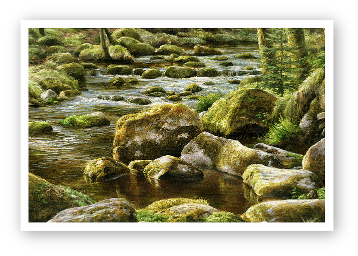 River Meavy, Norsworthy, Burrator, Dartmoor detail