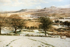 print Yellowmead Farm, West Dartmoor david young paintings