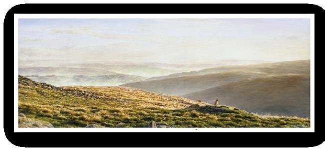 Valley Mists, Belstone, Dartmoor painting enlargement
