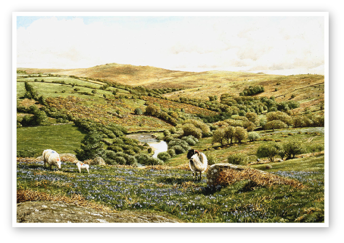 The West Dart valley, Dartmoor