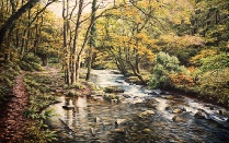 The East Okement River, Halstock Wood, Okehampton dartmoor david william young paintings