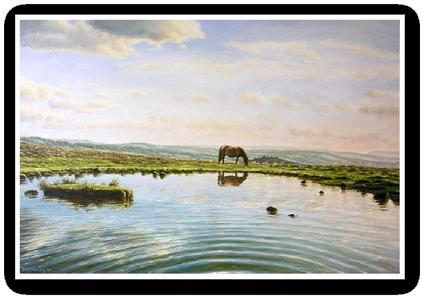 Reflection in a Dartmoor Pool, Dartmoor