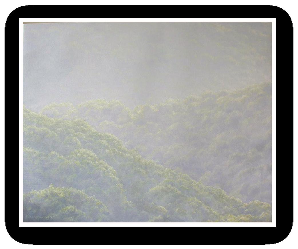 A Devon Rainforest, the Dart valley in a Summer haze, Dartmoor painting