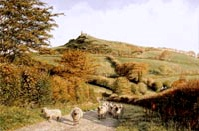 print brent tor dartmooor david william young paintings
