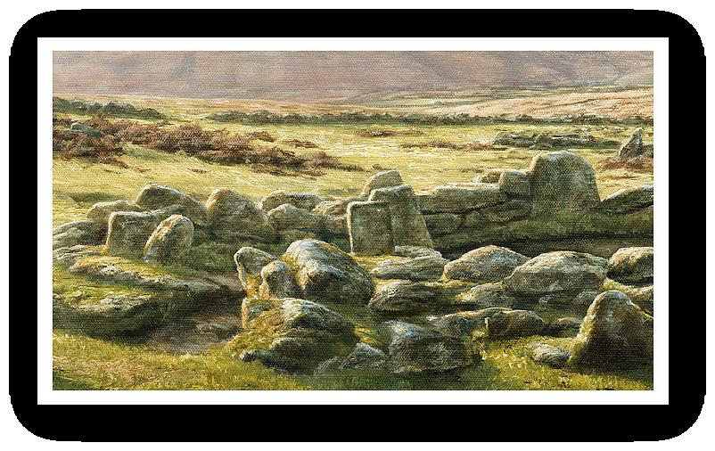 Grimspound, Dartmoor detail