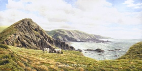 prints hartland peninsula north devon coast david young paintings