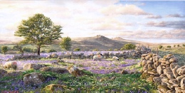 print bluebell fields tavy cleave dartmoor david young paintings