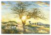 Paintings pop-up